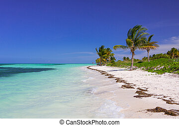 Caribbean beach in Cuba