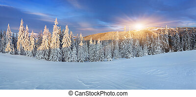 Beautiful winter sunrise in the mountains - Panorama of the...