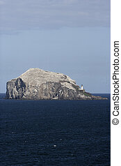 Bass rock, island near North Berwick, Scotland