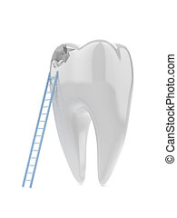Tooth and ladder isolated on a white background. 3d render