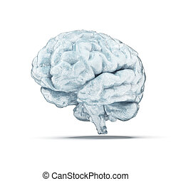 frozen brain isolated on a white background 3d render