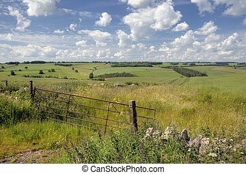 Cotswold downs - Rolling downs landscape with farm gate,...