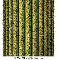 Saguaro Cactus - Digital illustration of a cross section of...