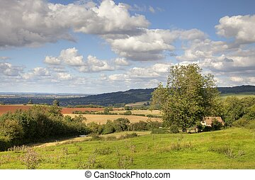 Cotswold landscape in late summer, Gloucestershire, England.