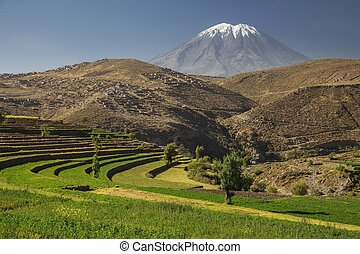 Incas garden and active volcano Misti, Arequipa, Peru Colour...