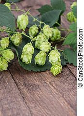 Hop Humulus lupulus on wooden background
