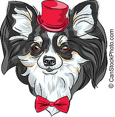 vector hipster dog Chihuahua breed smiling - color sketch of...
