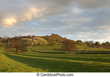 Warwickshire countryside - Ancient ridge and furrow field...