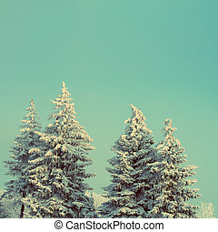 fir trees with snow under sky - vintage retro style
