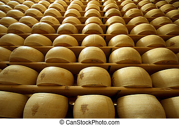 heap of freshly made wheels of cheese - vertical view of a...