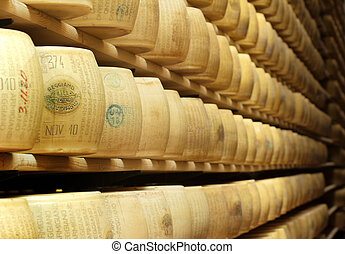 parmesan in a cheese factory