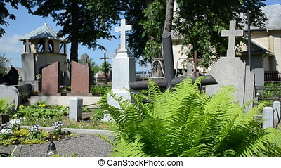 fern cross cemetery - Fern plant grow between grave tomb...