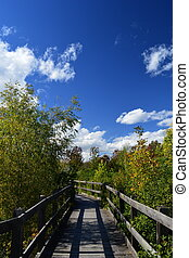 What's around the bend - Bridge across a small creek in an...