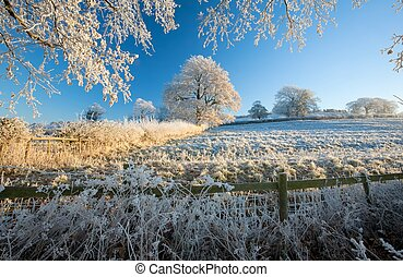 English farmland in winter - Hoar frost on farmland near...