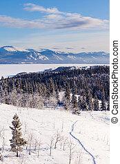 Taiga snowshoe trail landscape Yukon T Canada - Snow-shoe...