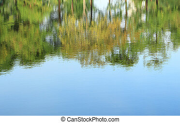 Trees mirrored on rippled water surface