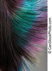 Dyed hair, professional hair coloring