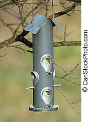 seed feeder for wild birds awaiting the hungry tits in a...