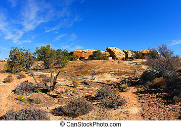Rocky prairie landscape - A picture of a rocky prarie...