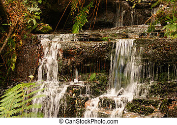 Tropical waterfall - A picture of a small waterfall in a...