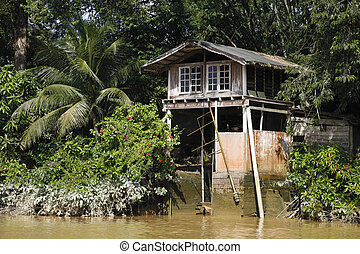 Jungle Boat House - Boat House in the Jungle