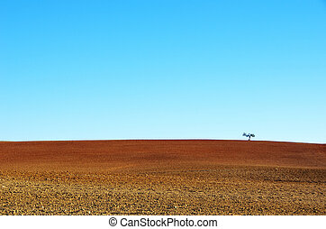 plowed soil of agricultural field