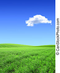 Beautiful landscape - Beautiful summer landscape A green...