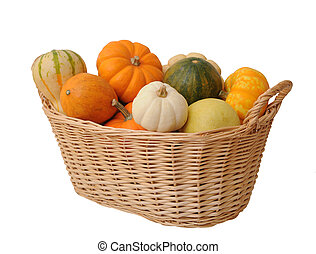 mini pumpkins and gourd in bucket isolated on white...