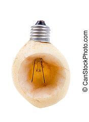 pear as a bulb