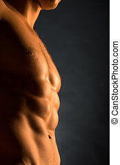 Close up of beautiful muscular male body in golden light....
