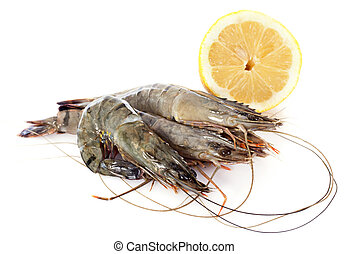 raw gambas in front of white background