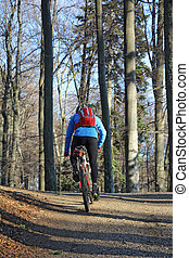Mountain biking - Mountain biker on pathway in mountain...