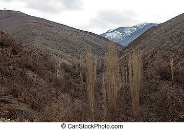 Mountains near Mashhad, Iran