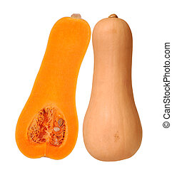 Butternut squash isolated - half and whole butternut squash...