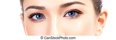 Beautiful female eyes, white background