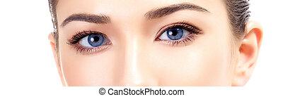 Beautiful female eyes, white background