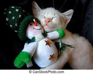 kitten cuddling with snowman toy - little kitten sleeping...