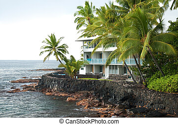 Luxury hotel on untouched volcano beach with palms trees and ocean in background