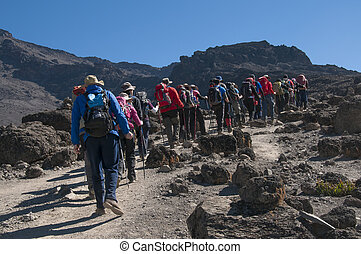 Group trekking on Machame route Kilimanjaro - A group...