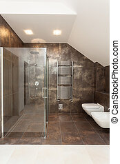 Shower, wc and bidet - Glass modern shower, wc and bidet in...