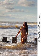 pelado, mulher, praia