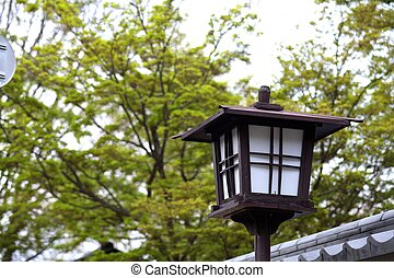 Beautiful sakura place - Beautiful sakura place for adv or...