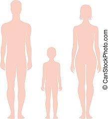 Human figure - Vector illustration of human figure. Man,...