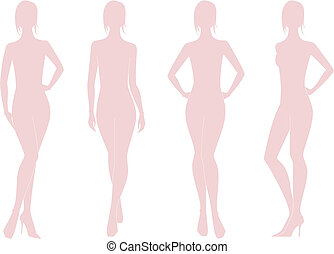 Woman figure - Vector illustration of female figure...