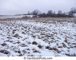 Snow-covered field_2 - Winter landscape with a gray sky and...