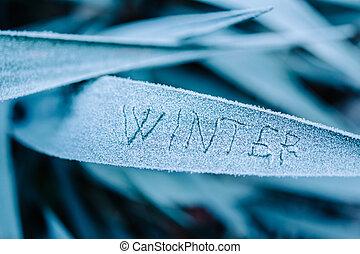 Winter written on frozen - The word winter written on a...
