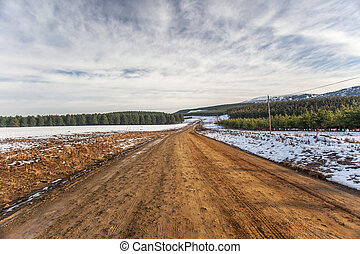 Dirt Road Snow Trees Horizon - Dirt road winds to horizon...