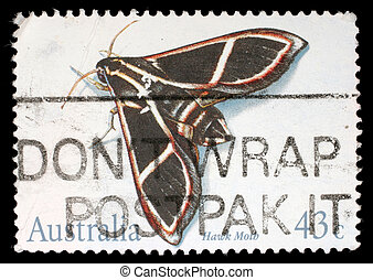 A stamp printed in the Australia shows Hawk Moth,...