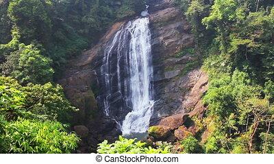 waterfall in Kerala state India