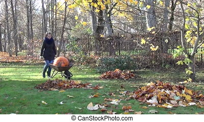 girl pumpkin wheelbarrow - farmer girl carry large orange...